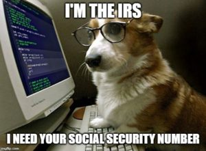 I'm the IRS: I need your social security number